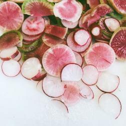 organic radishes. 5 tips for starting a garden