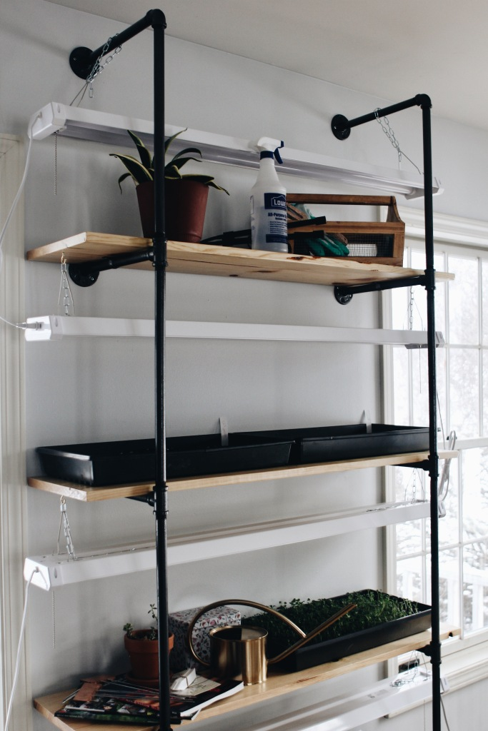 DIY Black Pipe Seed Starting Shelf