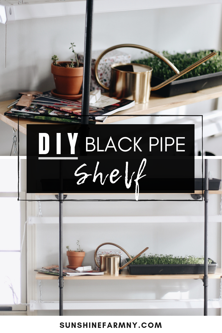 How to Build a DIY Black Pipe Shelf for Seed Starting
