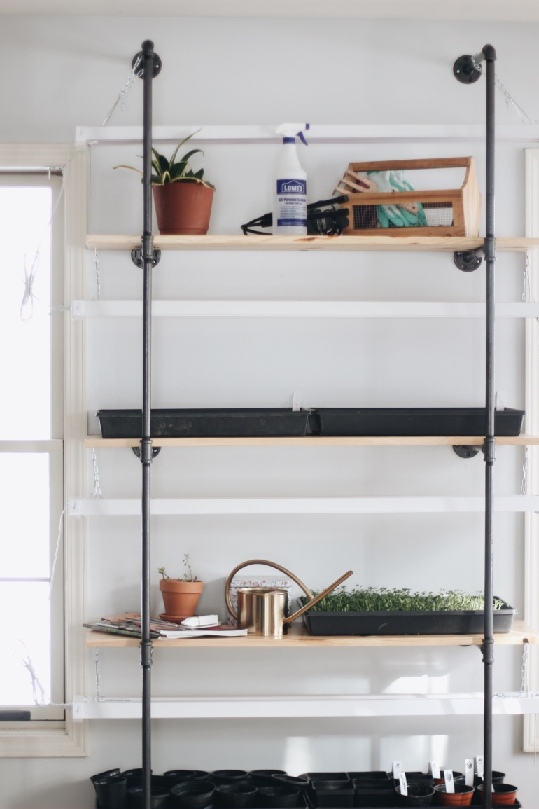 DIY Black Pipe Shelf for Seed Starting