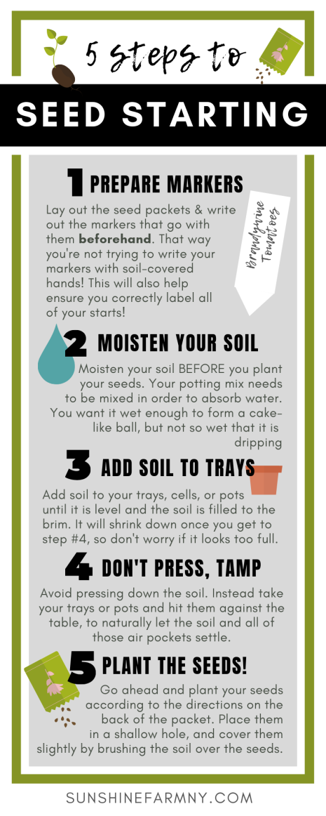5 Steps to Seed Starting Infographic