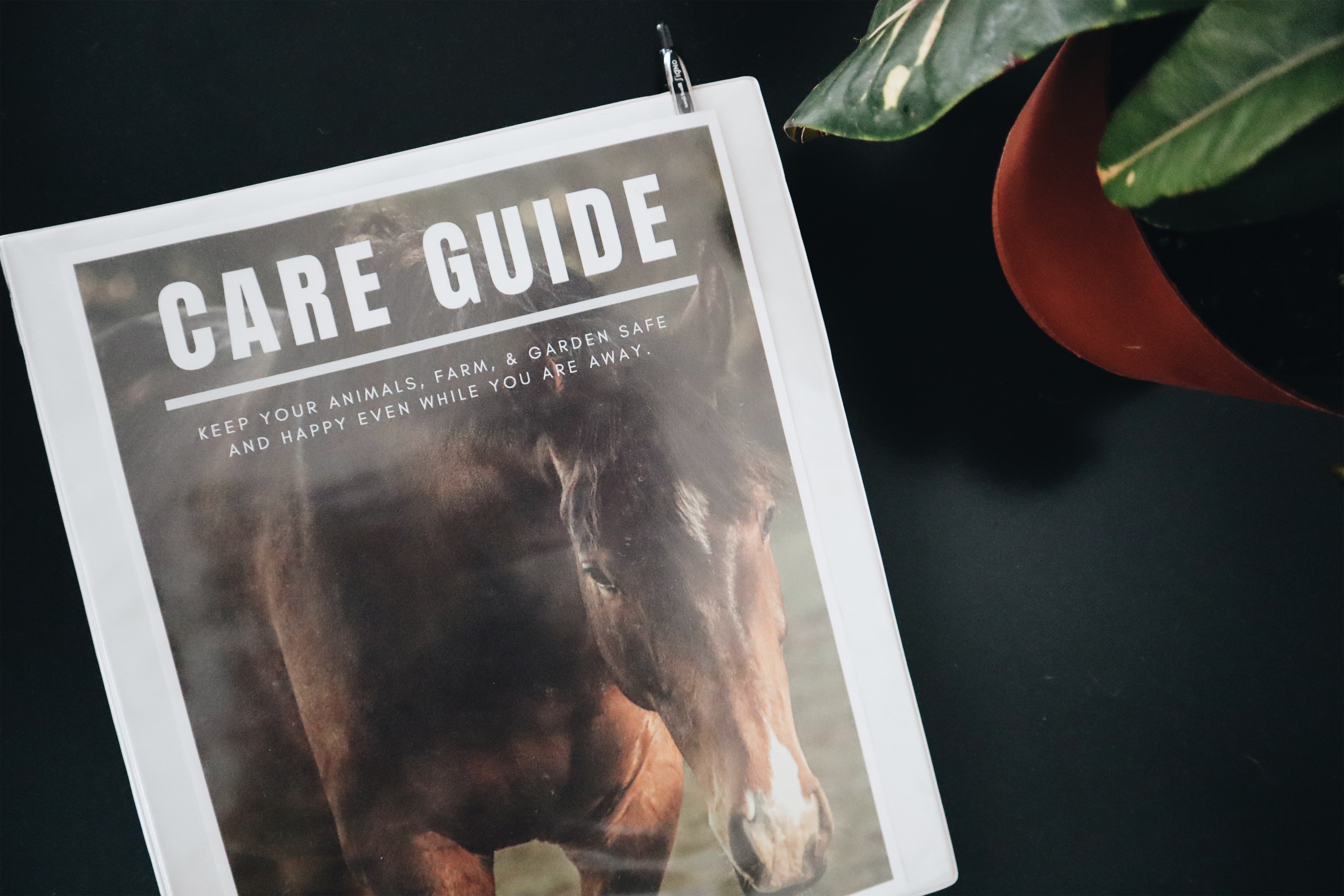 Homestead Farm Sitter Care Guide
