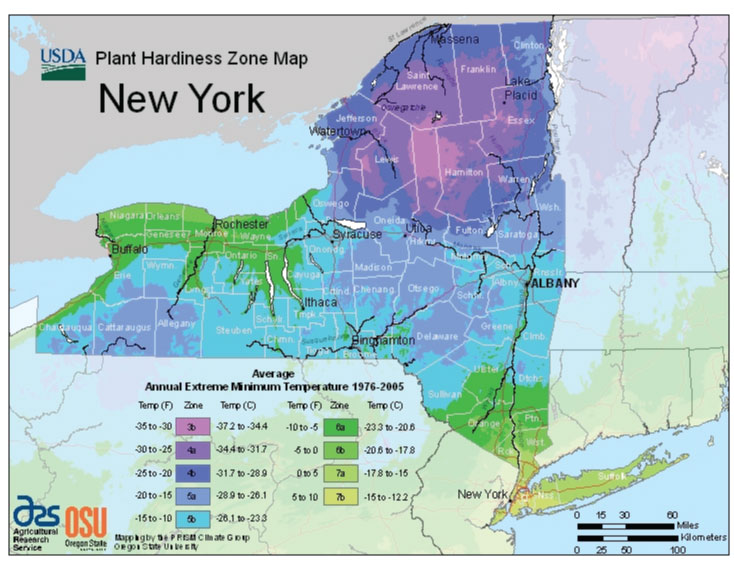 New York State Hardiness Zone Breakdown