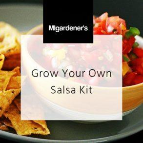 MIgardener Salsa Seed Kit