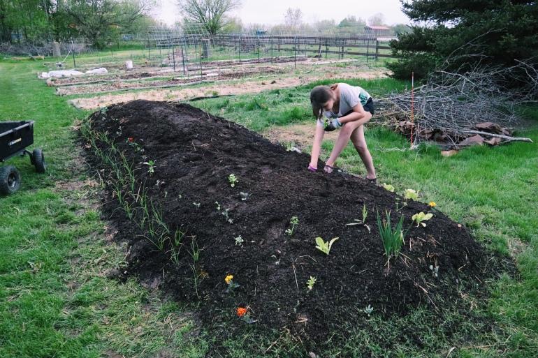 Building a Hugelkultur Bed step by step