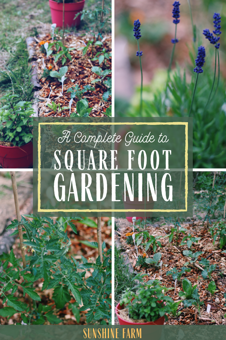 complete guide to square foot gardening method