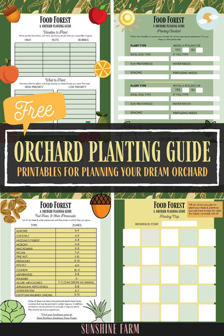 Orchard and Food Forest Planting Guide